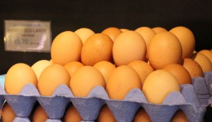 07Feb_Eggs