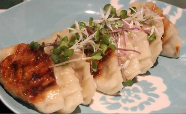 19April_CookedDumplings