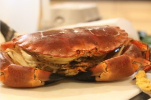 24april_Crab