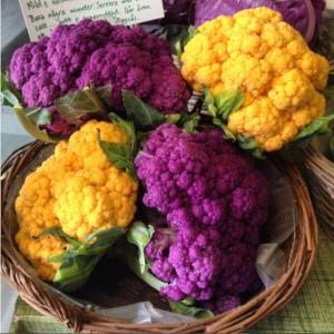 17Aug_Cauliflower