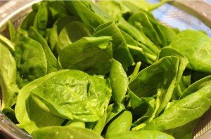 27Aug_Spinach