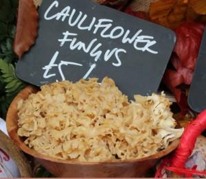 27Sept_CauliflowerFungus