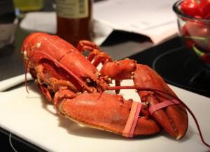 07Oct_Lobster