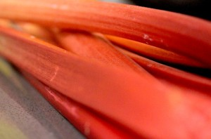 07April_Rhubarb