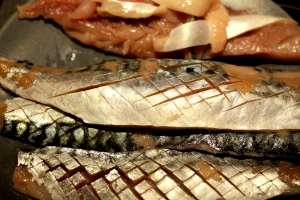 18Oct_FilletedMackerel