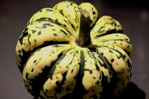 11Nov_Pumpkin