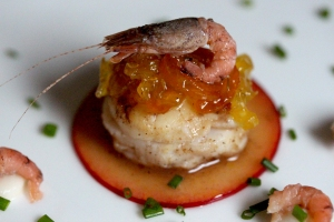 20Feb_Scallop&BrownShrimp_close