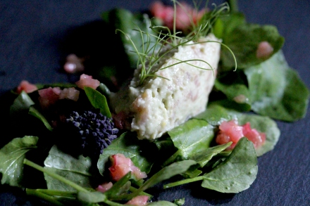 Dairy free salmon and avocado mousse