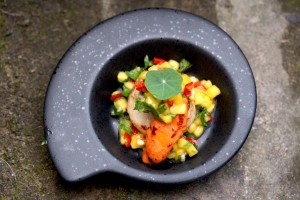 scallop with mango and corainder salsa
