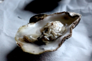 05June_Oyster