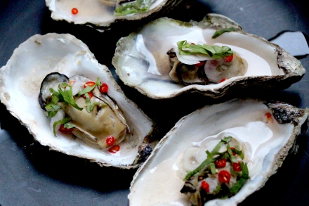 oysters with chilli and herbs