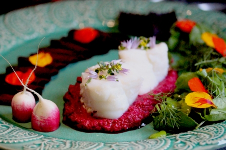 cod with beetroot homous