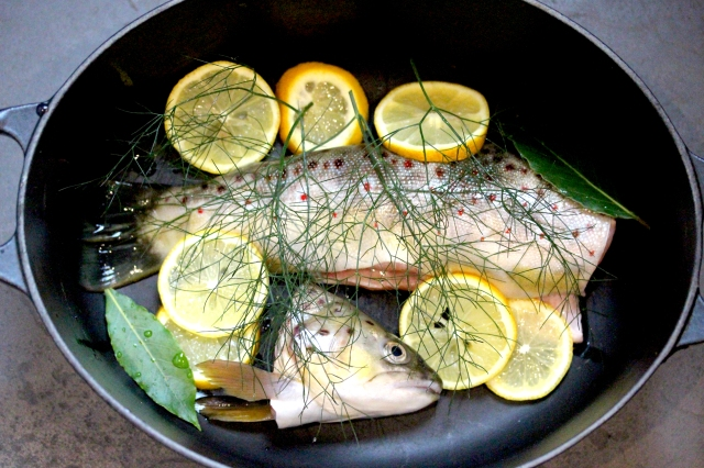 Trout with wild fennel and lemon