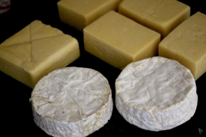 cheddar cheese and Camembert cheese
