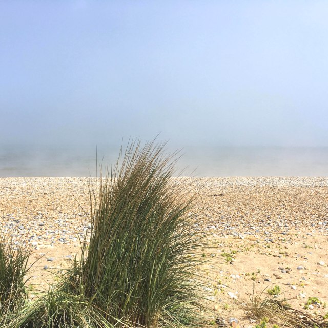 sea mist on the beach