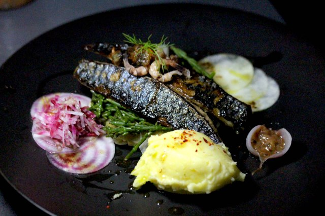 Pan fried Mackerel & saffron mash