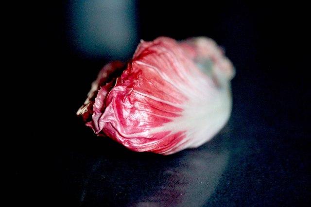 Rosa del Veneto Chicory